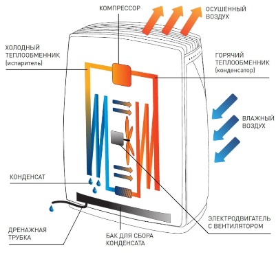 Как работает осушитель воздуха для квартиры?